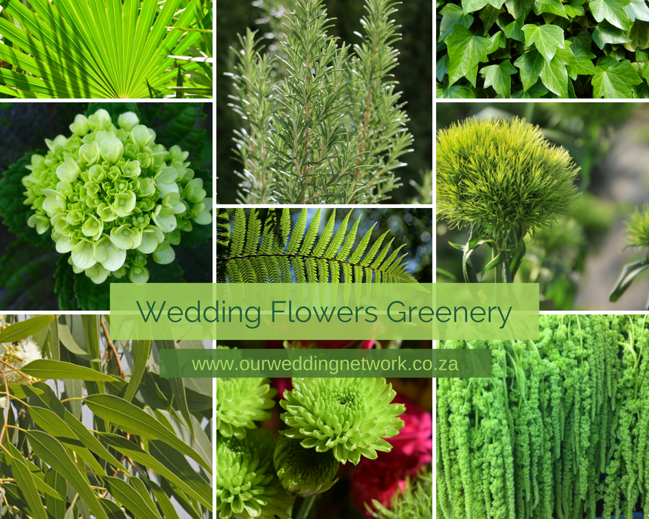 Wedding Flowers-Greenery