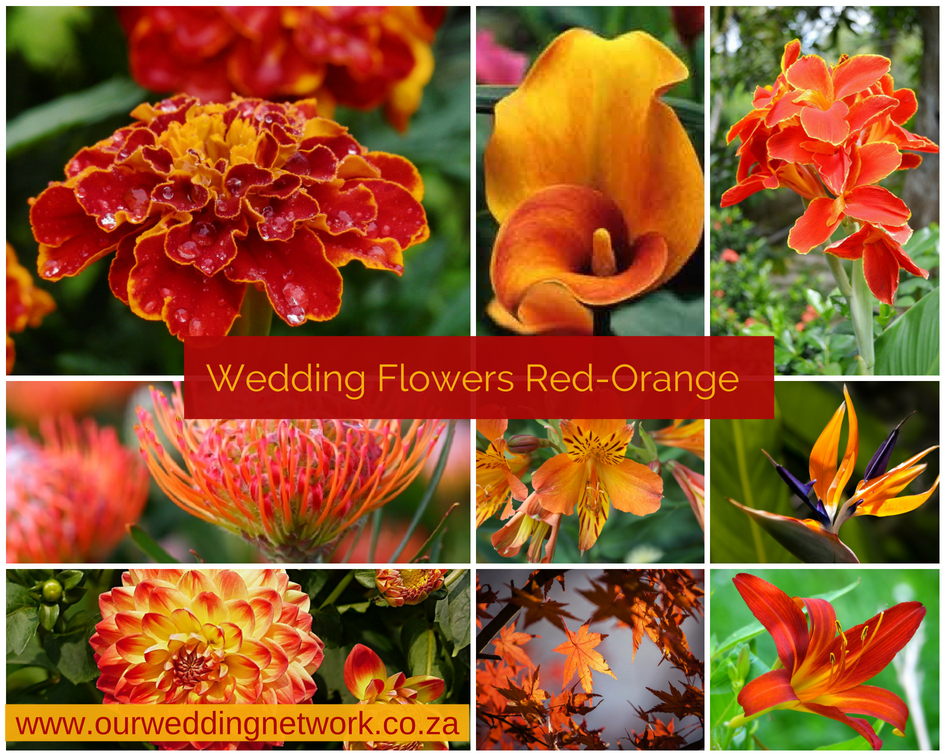 Wedding Flowers-Red-Orange