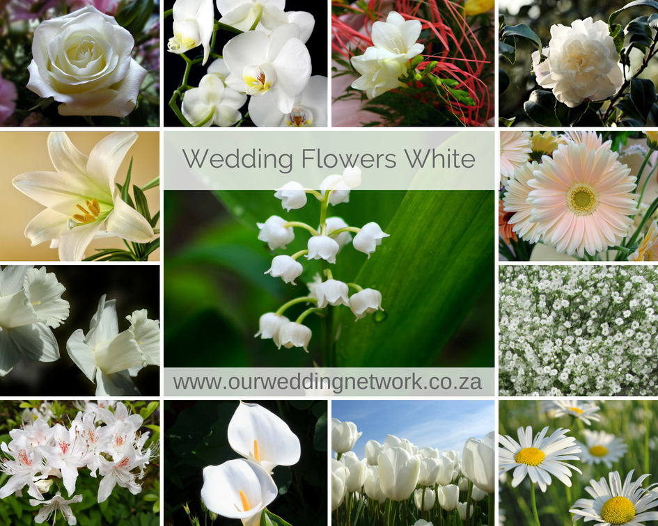 Wedding Flowers-White